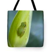 Tiny Tree Frog Cradle Tote Bag