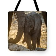 Tiny Trunk Tote Bag
