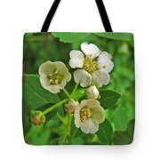 Tiny White Flowers Of A Bush Tote Bag