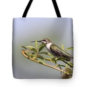 Tipping Around Tote Bag