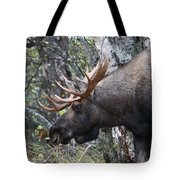 Tired Eyes Tote Bag