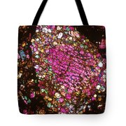 Tlm Of Chondrite Tote Bag