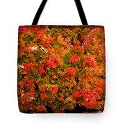 Tn Fall Tote Bag