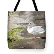 to swim or not to swim - A beautiful white duck ready to get into the sea or not Tote Bag