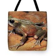 Toad Atelopus Senex On A Leaf Tote Bag