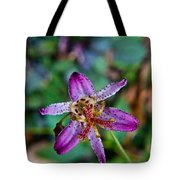 Toad Lilly 1 Tote Bag