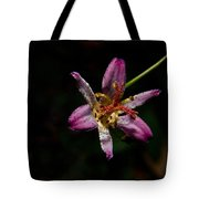 Toad Lilly 2 Tote Bag