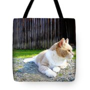 Toby Old Mill Cat Tote Bag by Sandi OReilly