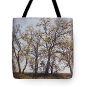 Together We Can Do Anything Tote Bag