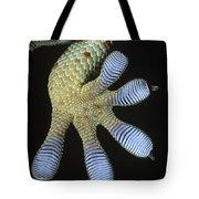 Tokay Gecko Gecko Gecko Underside Tote Bag