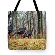 Tom Turkeys All In A Row 1 Tote Bag