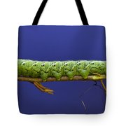 Tomato Hornworm Tote Bag