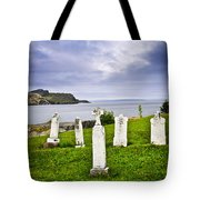 Tombstones Near Atlantic Coast In Newfoundland Tote Bag by Elena Elisseeva