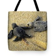 Tommy And Timmy Turtle Tote Bag