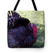 Tommy Turkey Tote Bag