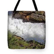 Tongass National Forest Tote Bag