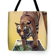 Too Late Dinner Time Tote Bag
