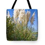 Topsail Grasses Tote Bag by Betsy Knapp