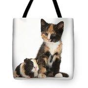 Tortoiseshell Kitten With Baby Tote Bag