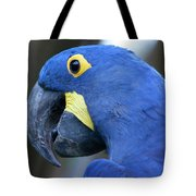 Totally Blue  Tote Bag