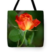 Touch Of Summer Tote Bag