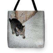 Tough Barn Kitten Tote Bag