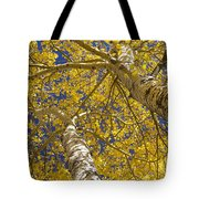 Towering Autumn Aspens With Deep Blue Sky Tote Bag