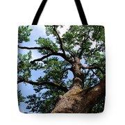 Towering Oak In Summer Tote Bag