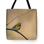 Townsends Warbler Tote Bag