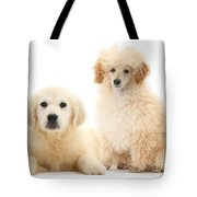 Toy Poodle And Golden Retriever Tote Bag