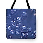 Tracheal Cartilage Tote Bag