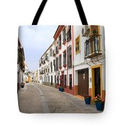 Traditional Houses In Cordoba Tote Bag
