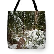 Trail Through Snow-decked Redwood Grove Tote Bag
