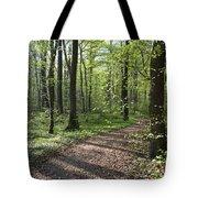 Trail Through Spring Forest Bavaria Tote Bag
