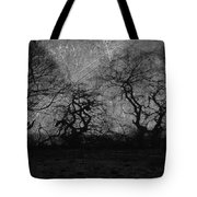 Trails Of Taken Tote Bag