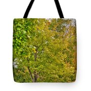 Transition Of Autumn Color Tote Bag