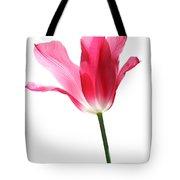 Translucent Pink Tulip Flower  Tote Bag