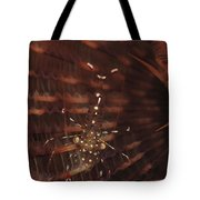 Transparent Shrimp On A Brown Feather Tote Bag