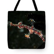 Transparent White And Red Harlequin Tote Bag