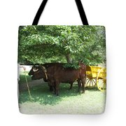 Transportation. Colonial Williamsburg. Virginia Tote Bag