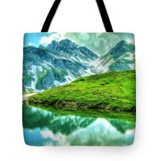 Travelers Rest Swiss Alps Tote Bag