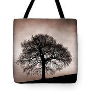 Tree Against A Stormy Sky Tote Bag