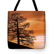 Tree Against A Sunset Sky Tote Bag