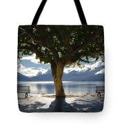 Tree And Benches Tote Bag