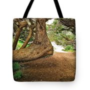 Tree And Trail Tote Bag