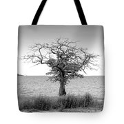 Tree And Water Tote Bag