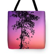 Tree At Twilight Tote Bag