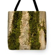 Tree Bark Mossy 4 C Tote Bag