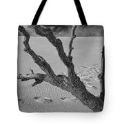 Tree Branch And Footprints On Sleeping Bear Dunes Tote Bag