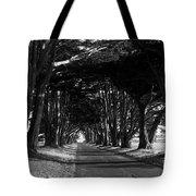 Tree Canopy Promenade Road Drive . 7d9977 . Black And White Tote Bag